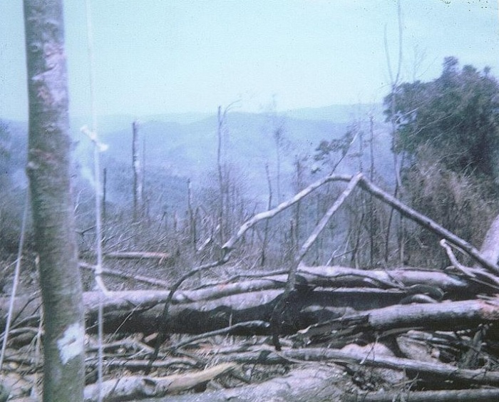 Chu Moor mountain from the LZ April 1968