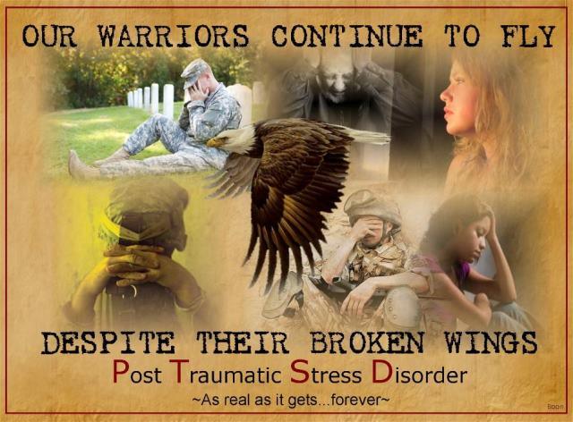 VN PTSD